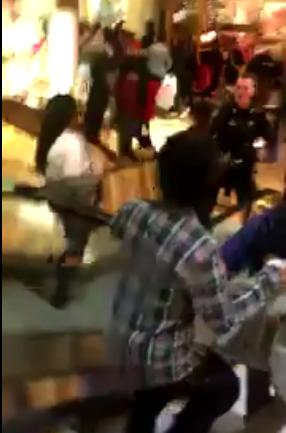 VIDEO: Blacks Riot at Fox Valley Mall in Aurora, Illinois